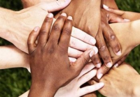 Photograph of Many Hands
